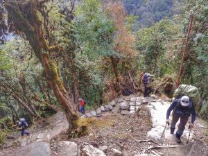 Лестницы на треке в Непале