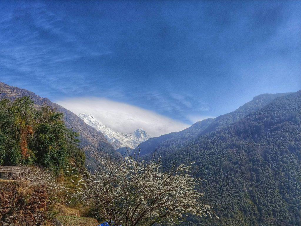 Весна в Непале