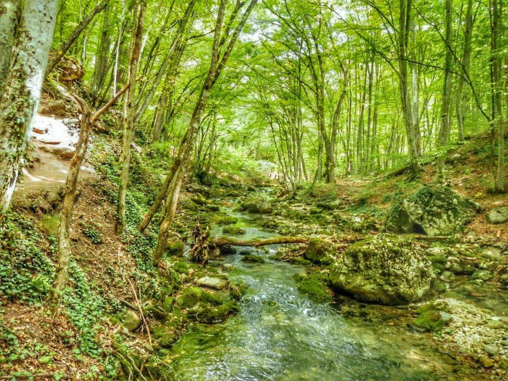Ручей Сары-узень