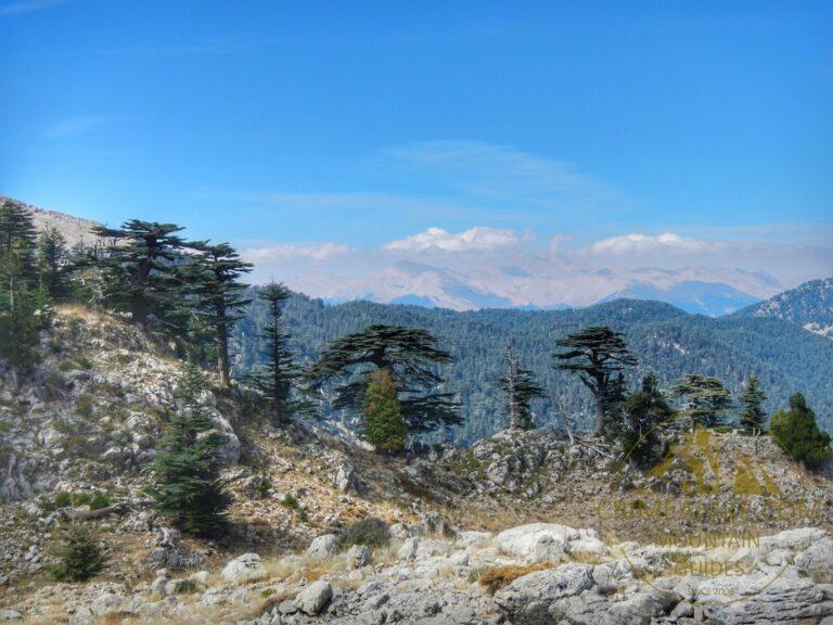 Горный хребет Тахталы
